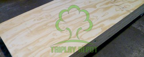 triplay PTS